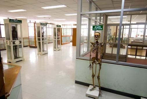Siriraj Medical Museum of Death in Bangkok, Thailand ...