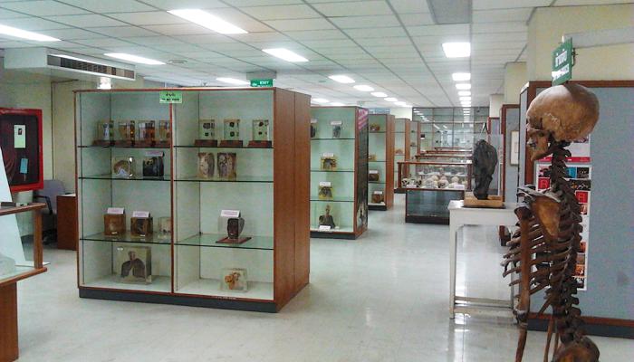 Siriraj Medical Museum of Death in Bangkok, Thailand » Tripfreakz.com