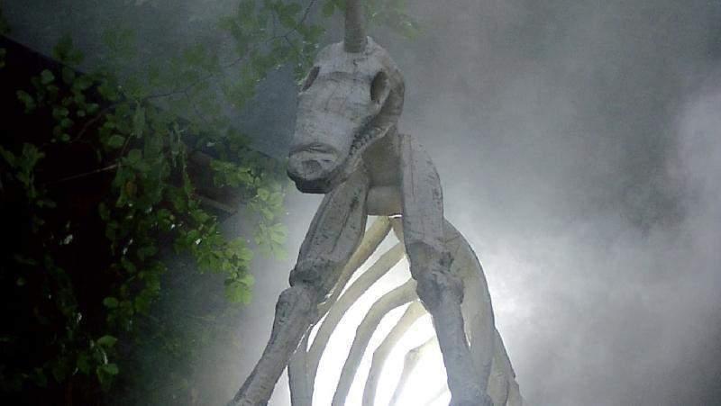 unicorn freiburg